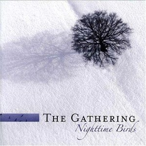 Imagem de 'Nighttime Birds ( Re-issue + Bonus )'