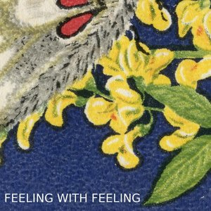 Image pour 'Feeling With Feeling'