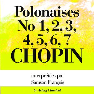 Immagine per 'Polonaises No. 4, In C minor, Op.40'