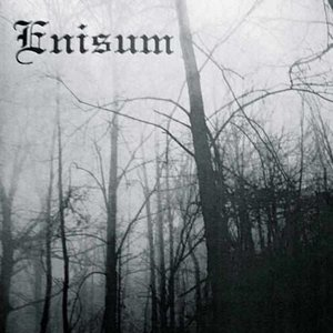 Image for 'Enisum'