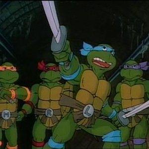Image for 'Die Ninja Turtles'