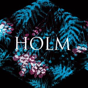 Image for 'Holm'