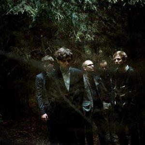 Bild för 'Woods of Birnam'