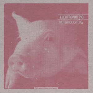 Image for 'Electronic Pig'