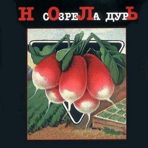 Image for 'Созрела дурь'