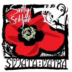 Image for 'Svitlyi Schljah'