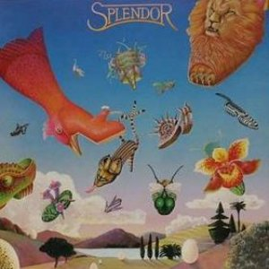 Image for 'Splendor'