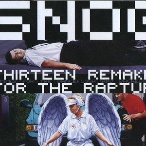 Image for 'Thirteen Remakes For The Rapture'