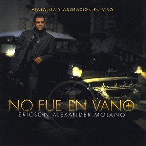 Image for 'No Fue en Vano'