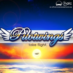 Image for 'Pilotwings: Take Flight'