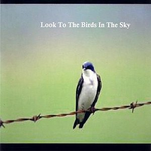 Image for 'Look To The Birds In The Sky'
