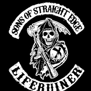 Image for 'Sons Of Straight Edge'