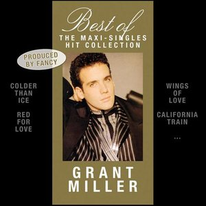 Image for 'Best Of: The Maxi-Singles Hit Collection'