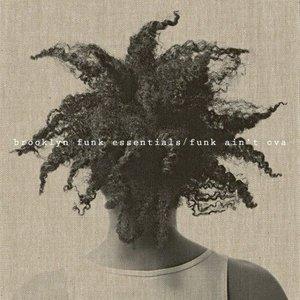 Image for 'Funk Ain't Ova'
