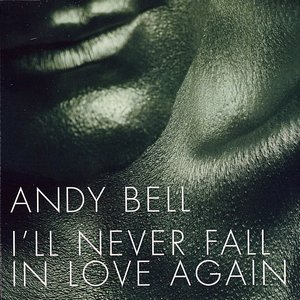Image for 'I'll Never Fall in Love Again'