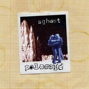 Image for 'Polaroid'