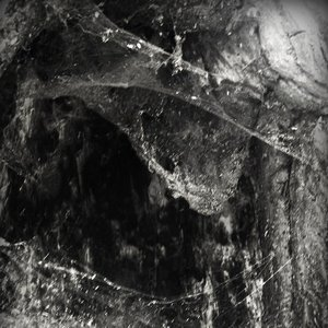Image for 'The Headless Serpent'