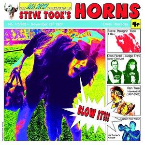Image for 'Steve Took's Horns'