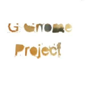 Image for 'G Gnome Project'