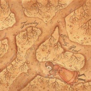 Bild für 'Tunneling'