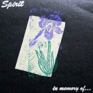 Image for 'in memory of...'