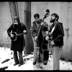 Immagine per 'The Avett Brothers'
