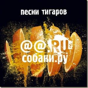Image for 'Песня тигаров'