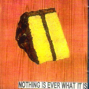 Image for 'Nothing Is Ever What It Is'
