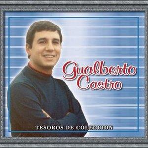 Imagen de 'Tesoros De Coleccion - Gualberto Castro'