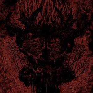 Image for 'Venus Illegitima'