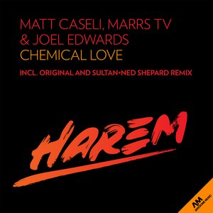 Image for 'Chemical Love'