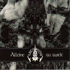 Image for 'Alleine Zu Zweit (Torris Vita)'