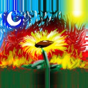 Image for 'Girassol'