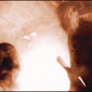 Image for 'MZ.412 vs. Folkstorm'