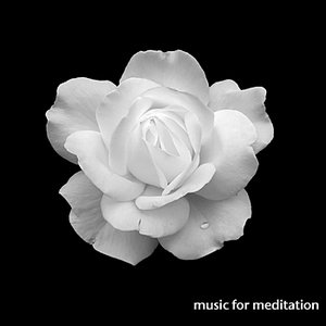 Immagine per 'Music for Meditation'