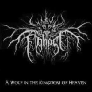 Image for 'A Wolf in the Kingdom of Heaven'