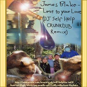Image for 'DJ Self Help Remixes'