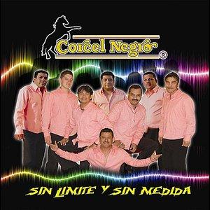 Image for 'Sin Limite Y Sin Medida'