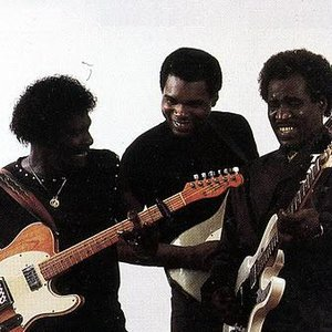 Image for 'Albert Collins, Robert Cray & Johnny Copeland'