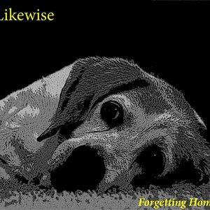 Image for 'Likewise'