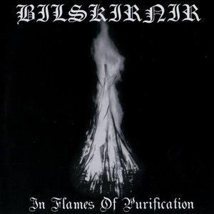 Bild für 'In Flames of Purification'