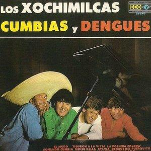 Image for 'Cumbias y dengues'
