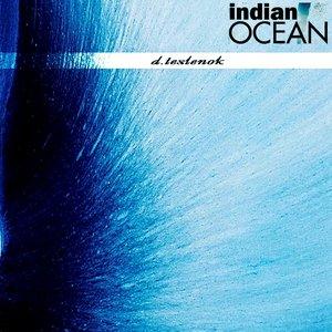 Изображение для 'Indian Ocean.EP'