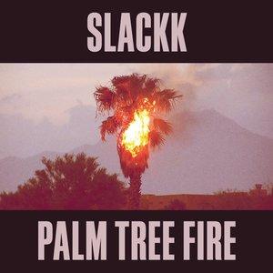 Imagem de 'Palm Tree Fire'