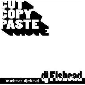 Image for 'Cut Copy Paste'