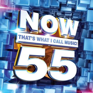 Image for 'Now That's What I Call Music! 55'