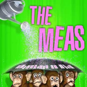 Image for 'The Meas'