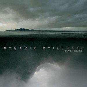 Image for 'Dynamic Stillness'
