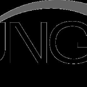 Bild für 'Bungie'