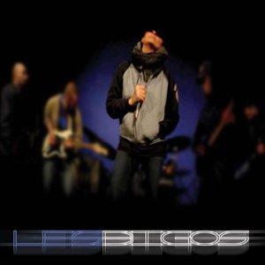Image for 'Les Bigos'